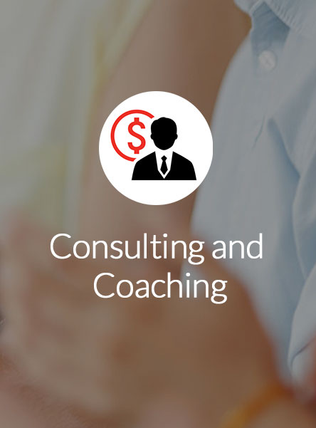 Consulting and Coaching Details